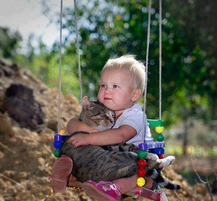 cat n baby