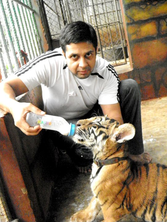 My son with a tiger cub, can't stop smiling