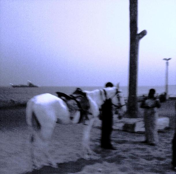 Image1798