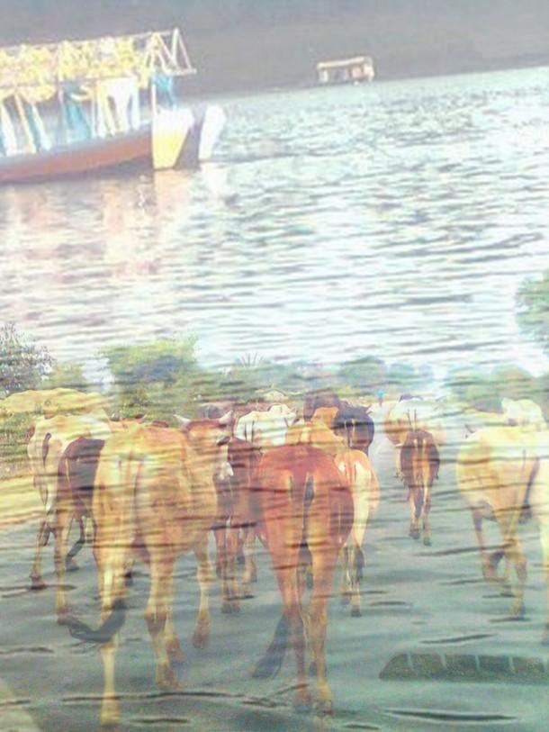 jabalpur-tour